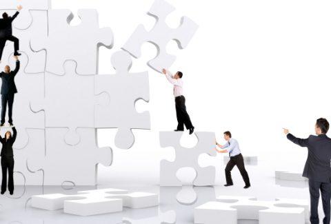 estandarización de los procesos en la empresa o negocio