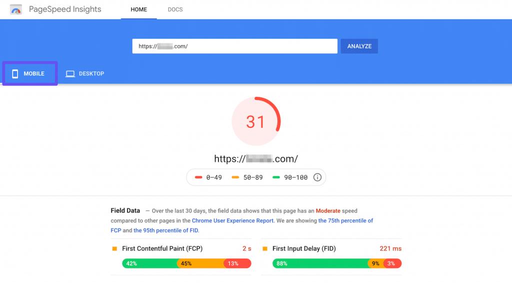 Google PageSpeed Insights.