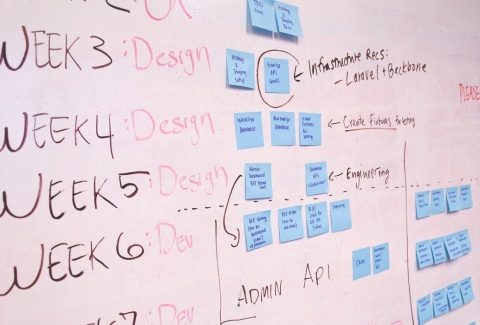 ¿Querés saber cómo realizar la organización de un proyecto? En esta nota te contamos 10 pasos de llevarlo a cabo. ¡Seguí leyendo!