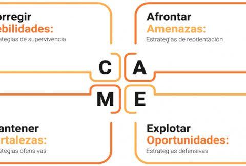 grafico-analisis-CAME